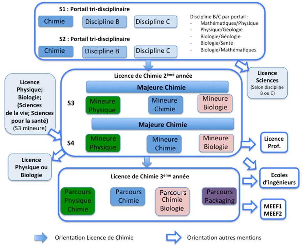 Schéma de la licence de chimie